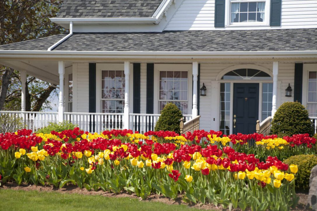 cropped-white-house-with-red-and-yellow-tulips-2017.jpg