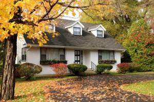 fall House landscape 2017