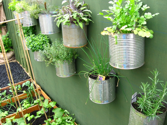 Image result for pictures of herb gardens